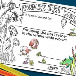 Bostik DIY South Africa Tutorial Best Dad Award banner