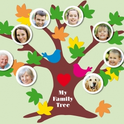 Bostik DIY South Africa Tutorial Family Tree banner