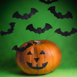 Bostik DIY South Africa Tutorial Halloween Bats teaser image