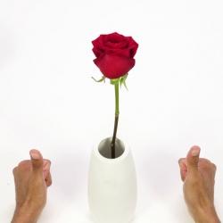 Bostik DIY Russia Ideas Inspiration Repair a Vase banner image
