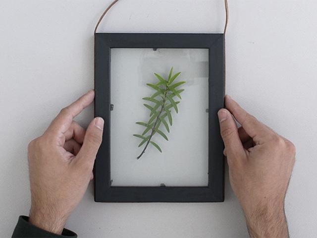 Bostik tuto diy cadre vegetal 4.3