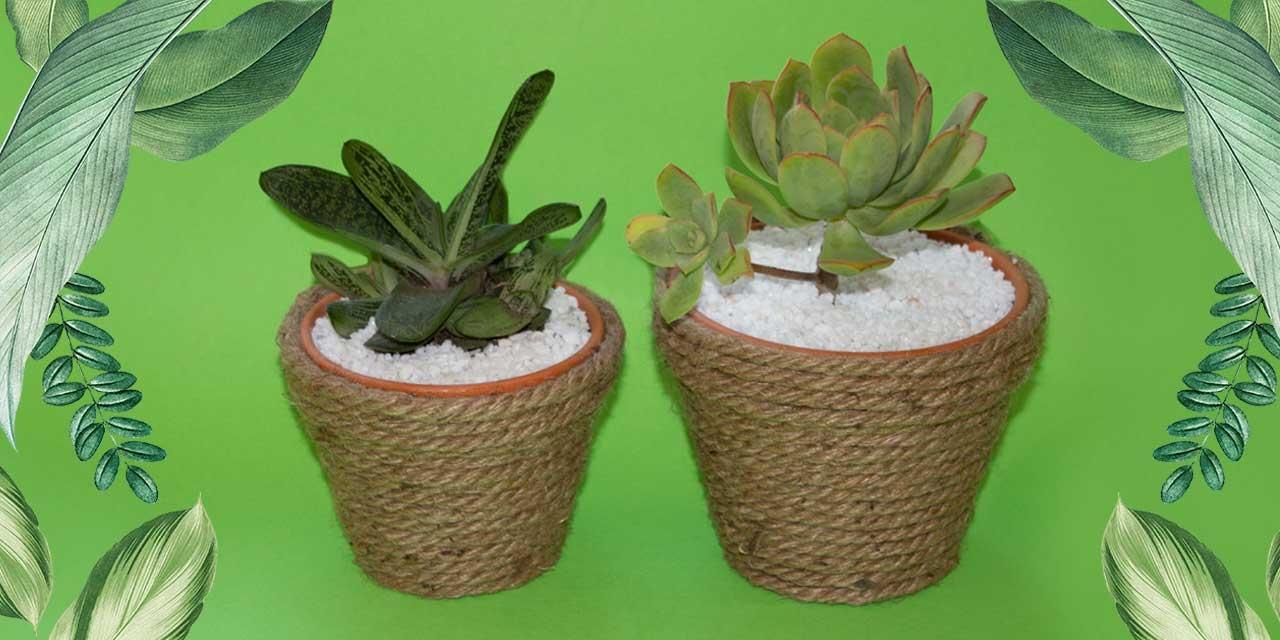 Bostik DIY South Africa Tutorial Planter pots Teaser
