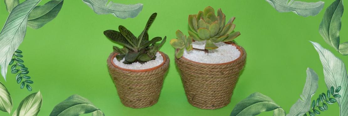 Bostik DIY South Africa Tutorial Planter Pots Banner image