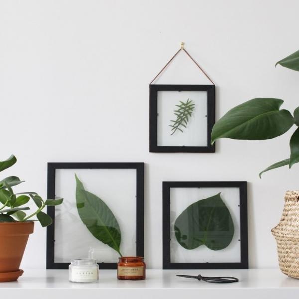Bostik DIY Tutorial plant image title