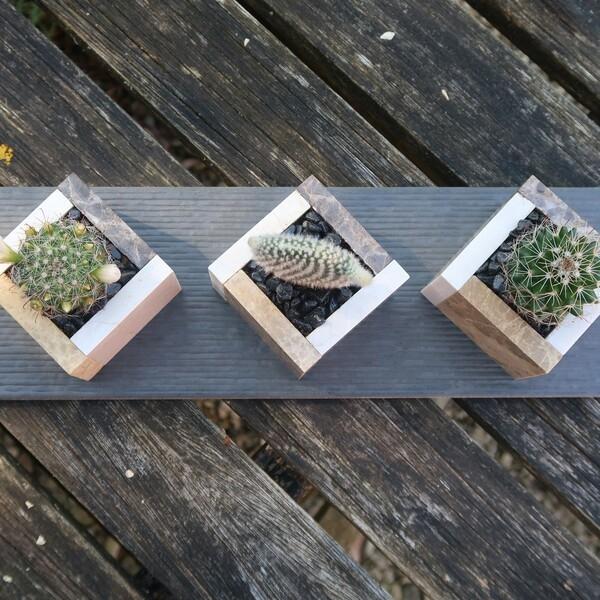 Bostik-DIY-square-pots-for-small-plants-step6