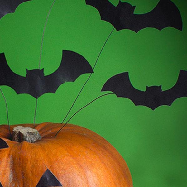 Bostik DIY South Africa Tutorial Halloween Bats step 2