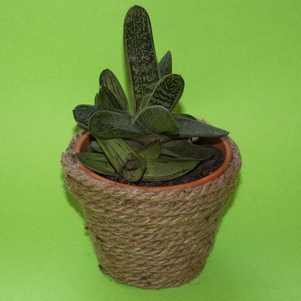 Bostik DIY South Africa Tutorial Planter Pots step 3