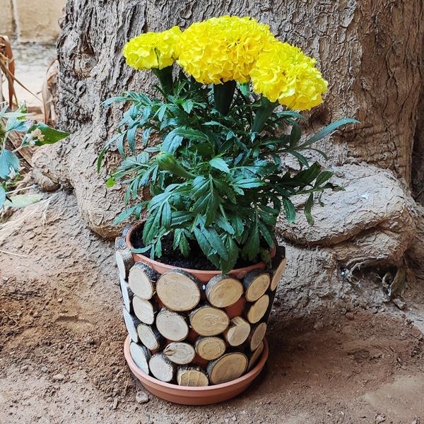 Bostik DIY Greece tutorial Flower Pots step 13