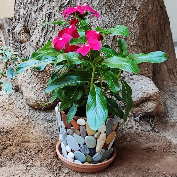 Bostik DIY Greece tutorial Flower Pots step 19