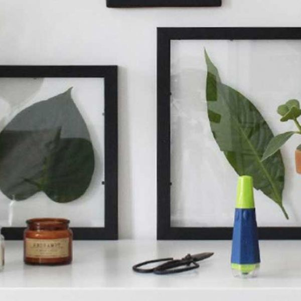 Bostik DIY Romania tutorial cadre plant banner image